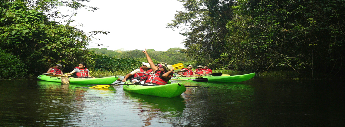 Team Building – Kayak